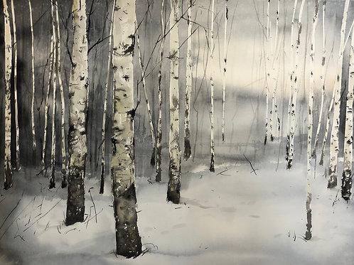 Watercolor ( Original ) 76x56 cm Björkar i Medelpad 2021 Oramad