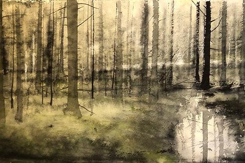 Watercolor ( Original) granskog Ramsele 30x15cm  oramad 2021