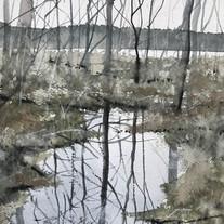 Noren i Vallsjön