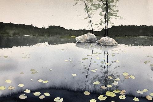 Watercolor ( Original) Näckrosor i Vallsjön 40x56cm  oramad 2020