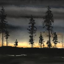 Solnedgång över Kalhygge