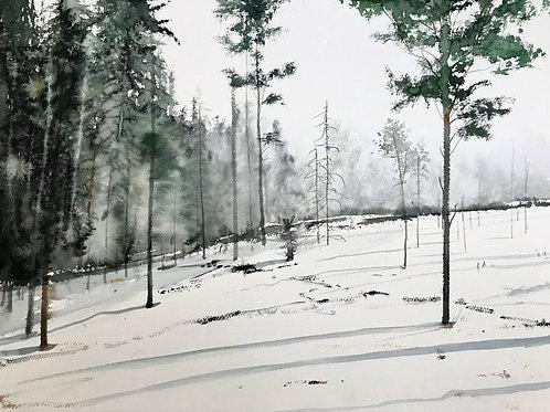 Watercolor ( Original ) 90x70 cm Kalhygge Jämtland Inkl Ram 2018
