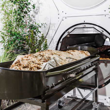 The Magic of Carbon and Composting