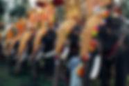 Hindistan'da Fil Festivali
