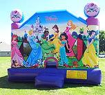 Disney-princess Large.jpg