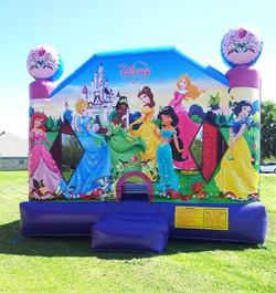 Disney-princess Large