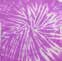 Spider Purple