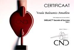 CND Shellac Secrets of succes CE