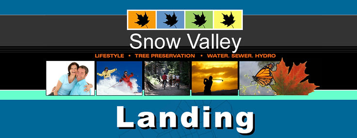 Snow Valley Landings