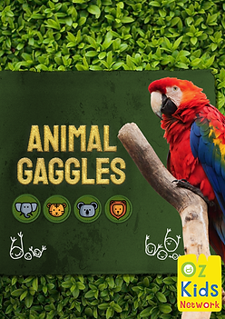 animalgaggles-cover-large.png