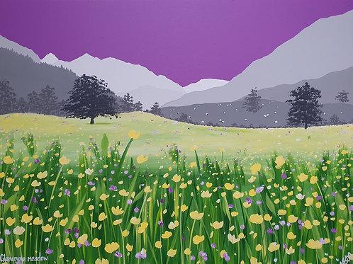 Glencoyne meadow