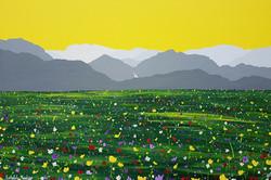 SOLD Easedale Meadow