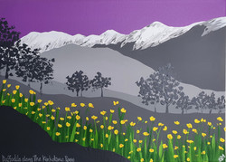SOLD Daffodils along The Kirkstone Pass