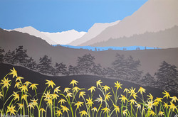 SOLD Daffodils above Buttermere