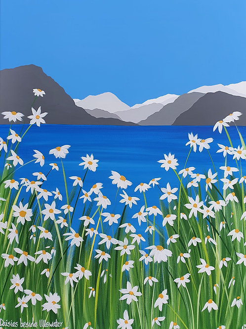 Daisies beside Ullswater greeting card