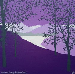 SOLD Grasmere through Red Bank Wood