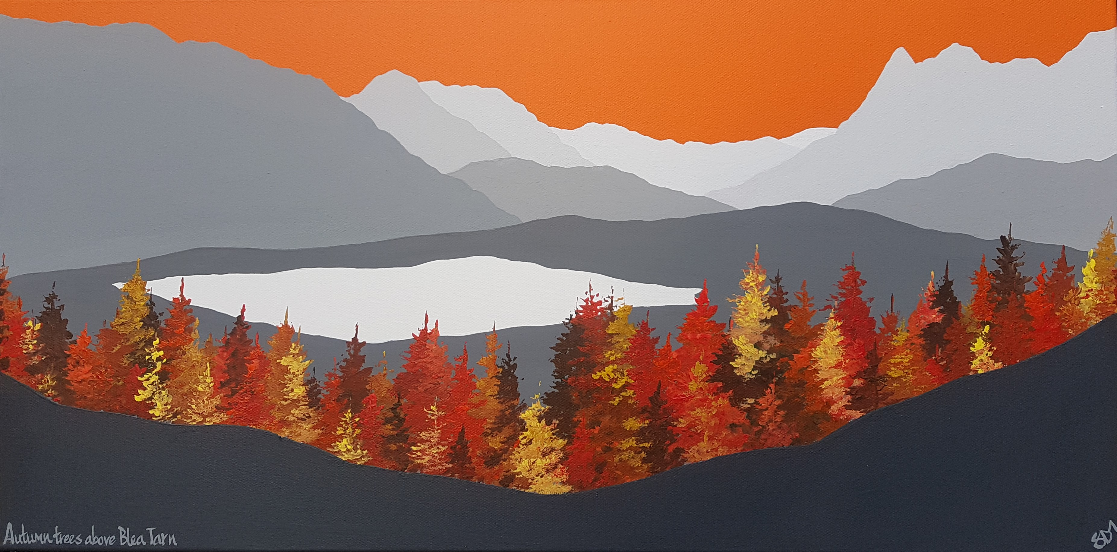 SOLD Autumn trees above Blea Tarn