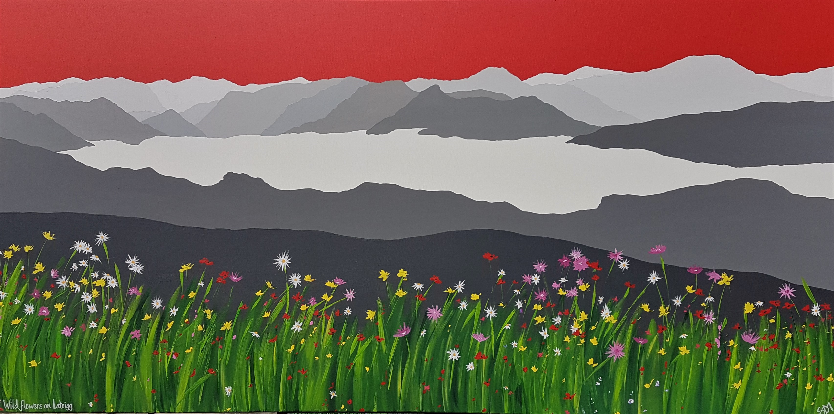 SOLD Wild flowers on Latrigg