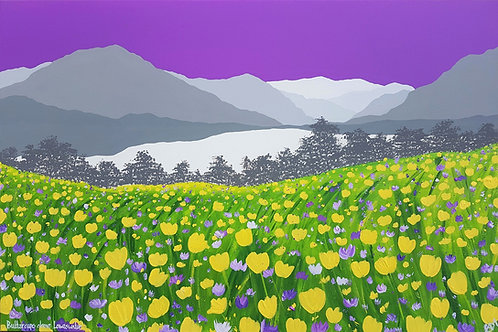 Print - Buttercups above Loweswater