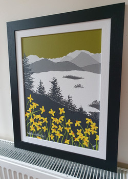 SOLD Daffodils on Walla Crag