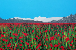 SOLD Poppies in Langdale