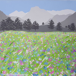 Spring Meadow, Langdale