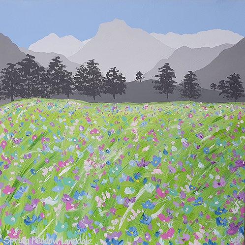 Spring Meadow,Langdale