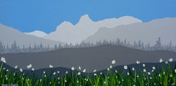 SOLD Daisies in Langdale