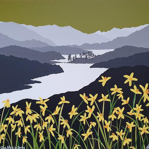 Glen Affric in Spring