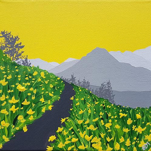 Daffodils along The Ullswater Way (mini)