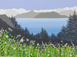 SOLD Summer flowers on Walla Crag