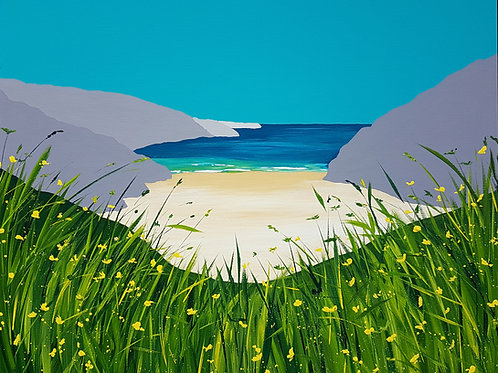 Early summer at Mwnt Beach