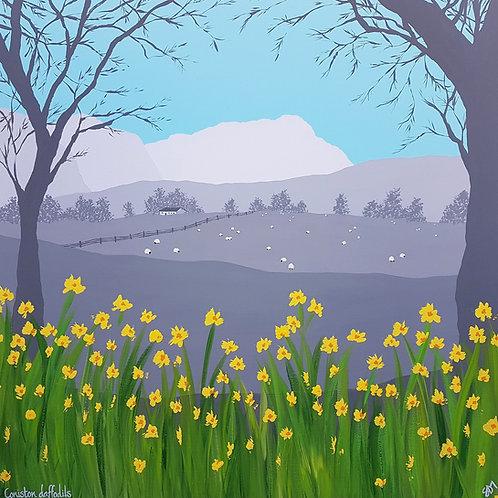 Daffodils in Coniston greeting card