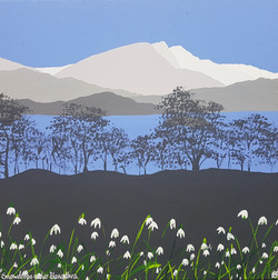 SOLD Snowdrops under Blencathra