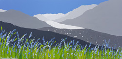 SOLD Rannerdale Bluebells