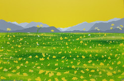 SOLD Buttercup Meadow, Borrowdale