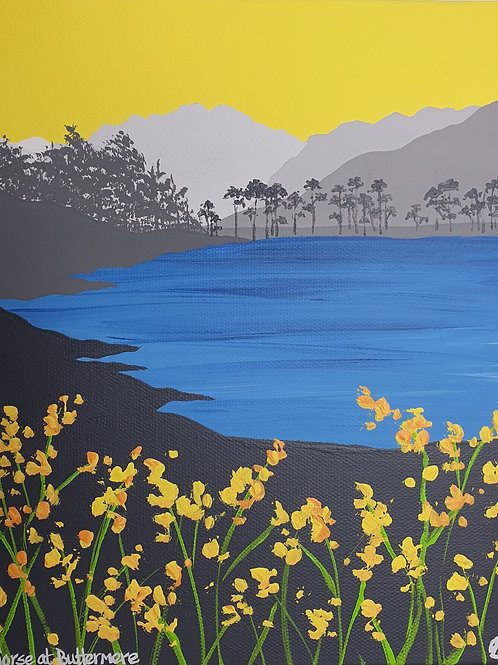 Gorse at Buttermere