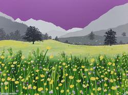SOLD Glencoyne meadow