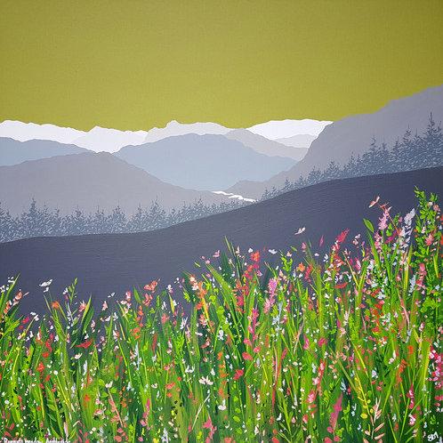 Greetings card - Ronnie's Meadow, Ambleside