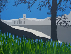 SOLD Fountains Abbey bluebells