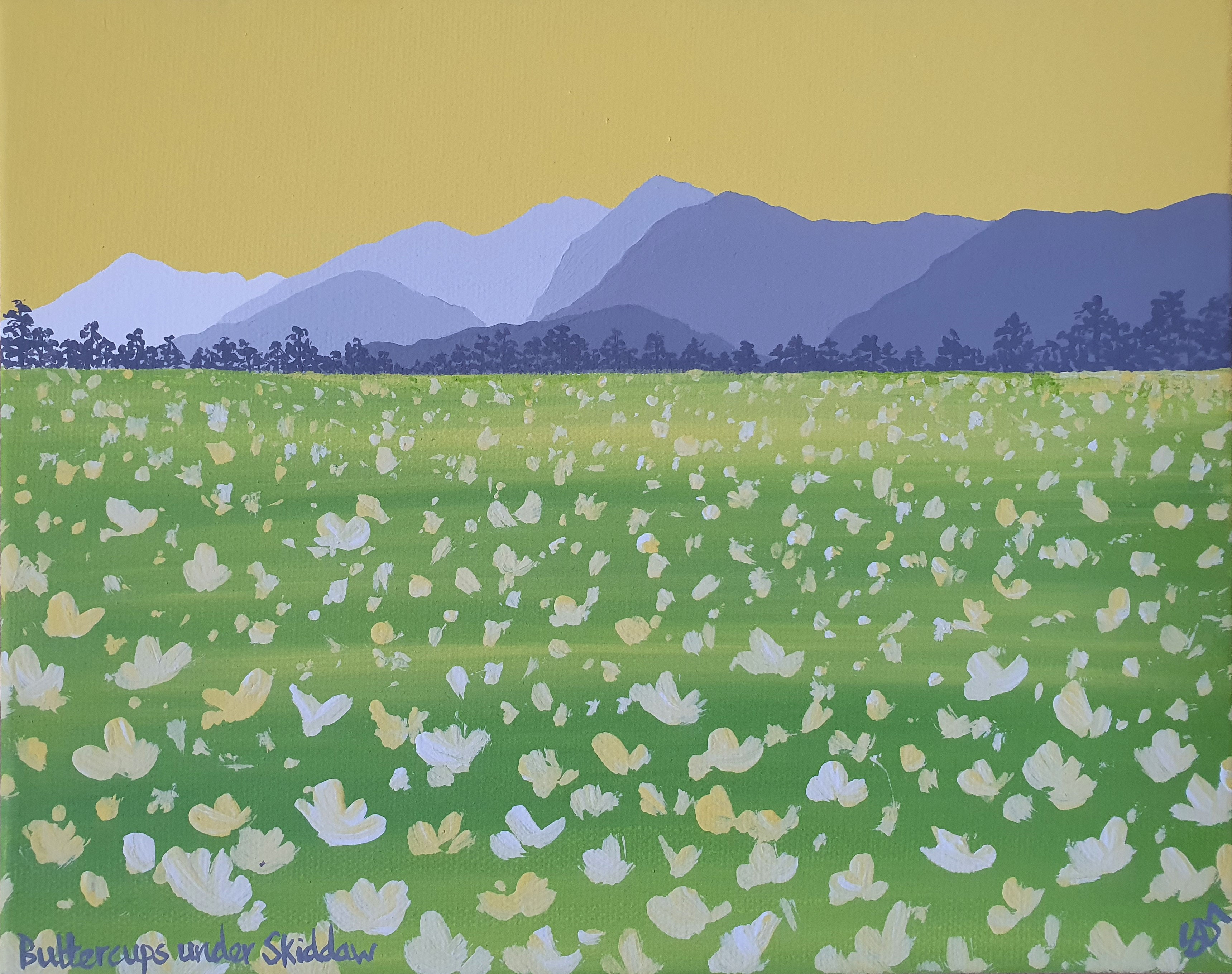 SOLD Buttercups under Skiddaw