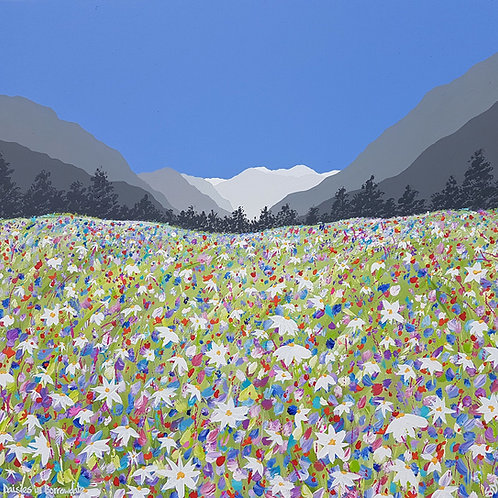 Daisies in Borrowdale greeting card