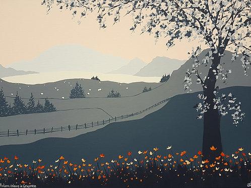 Autumn colours in Grasmere