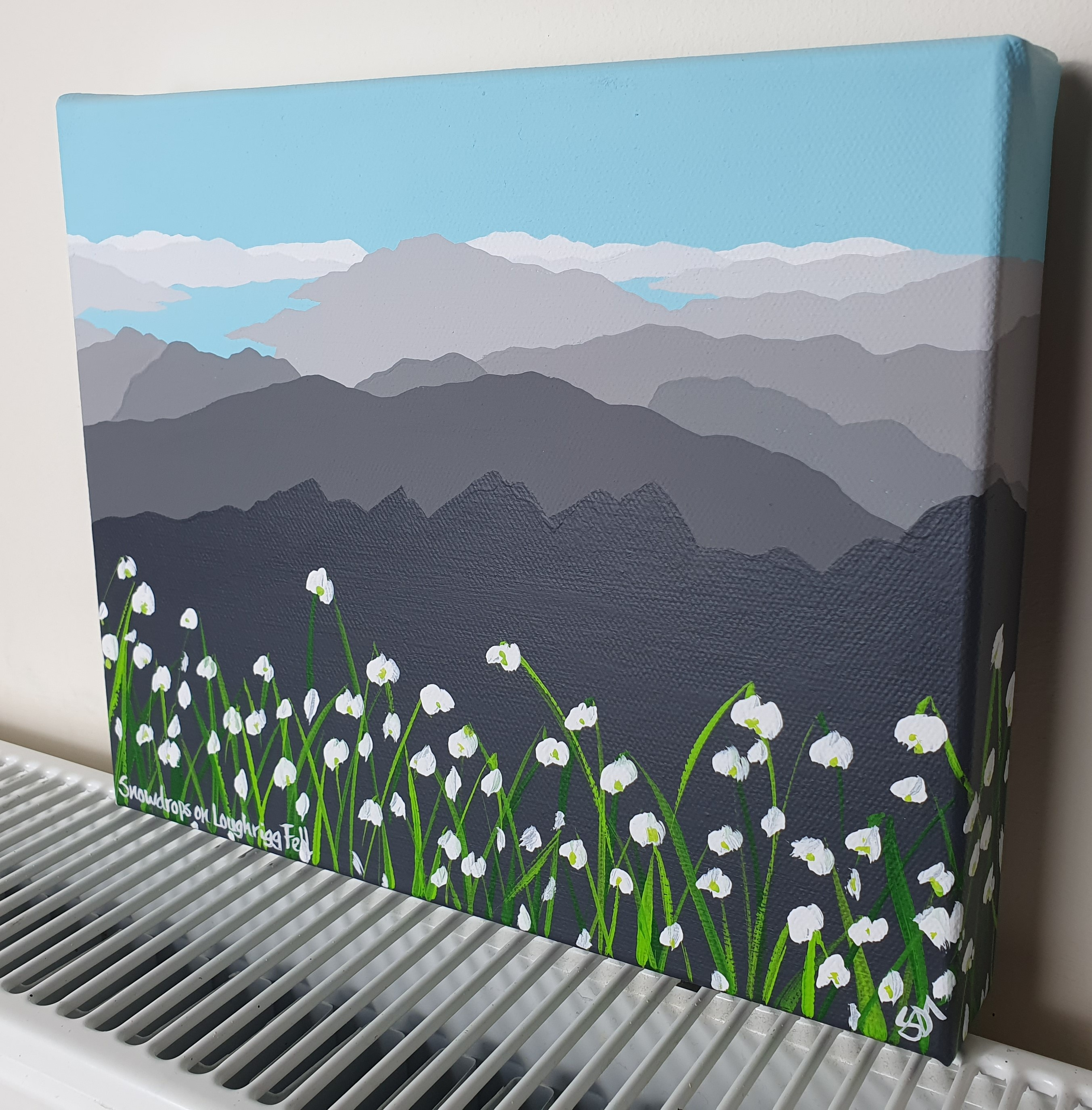 SOLD Snowdrops on Loughrigg Fell