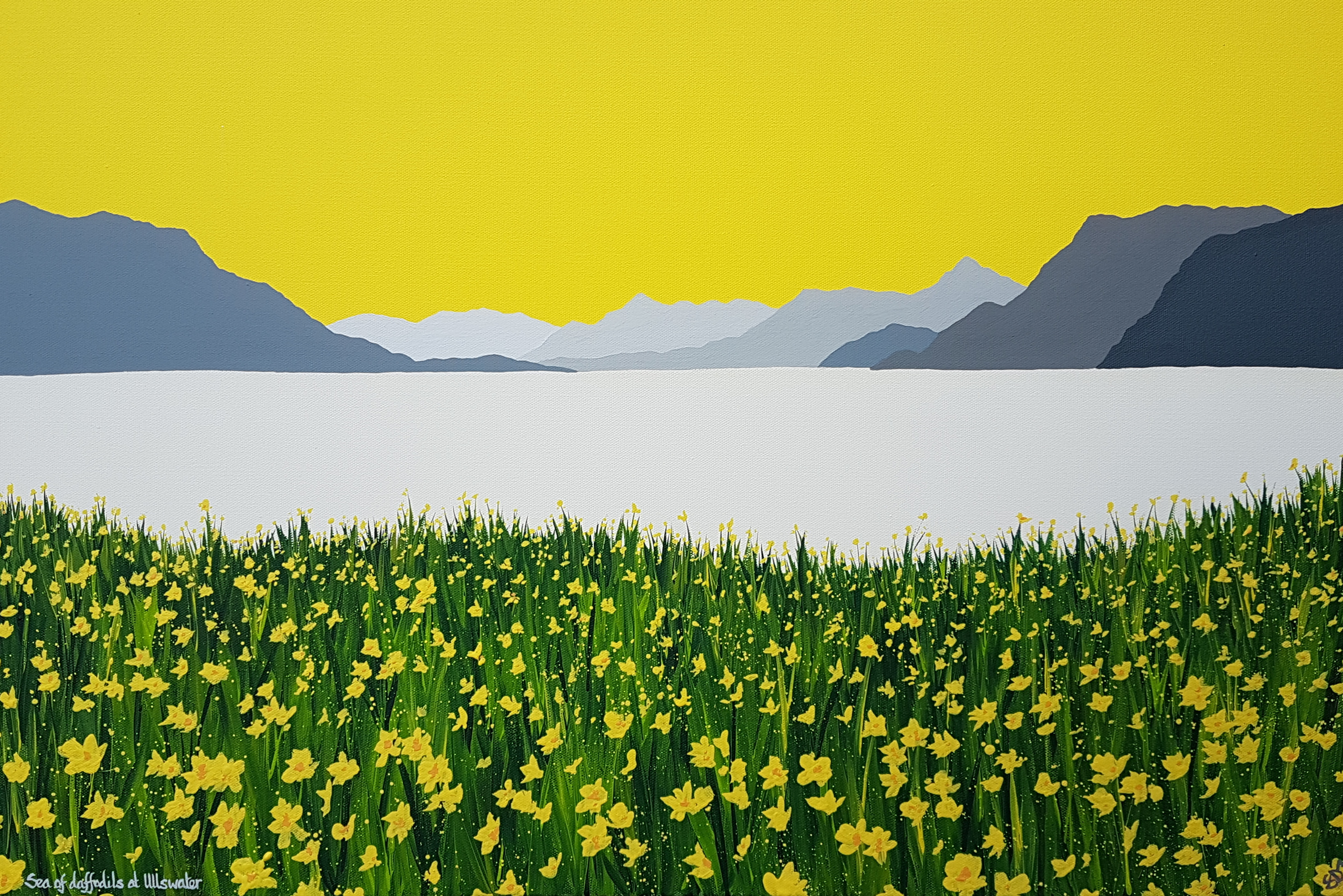 SOLD Sea of daffodils at Ullswater