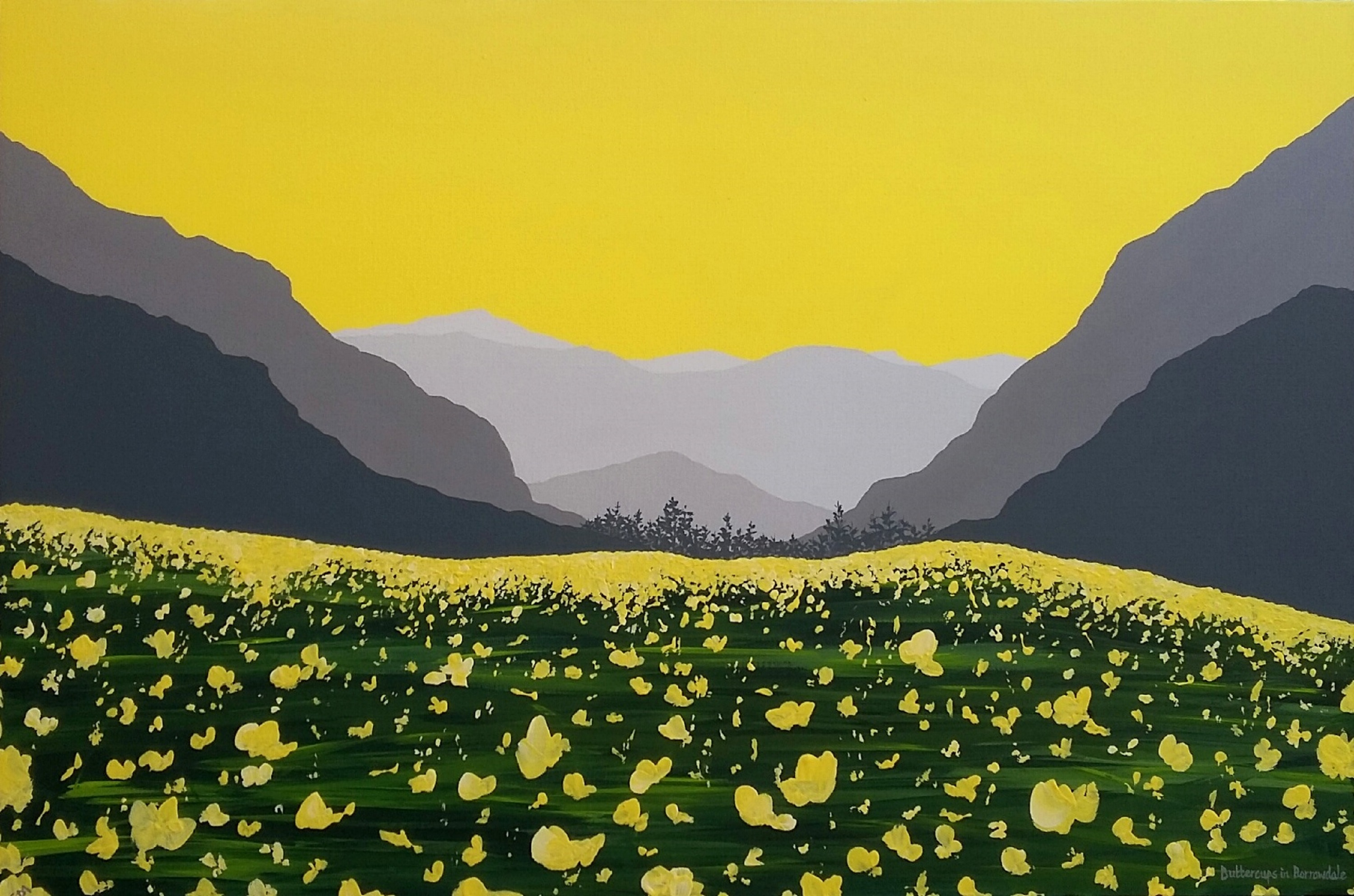 SOLD Buttercups in Borrowdale