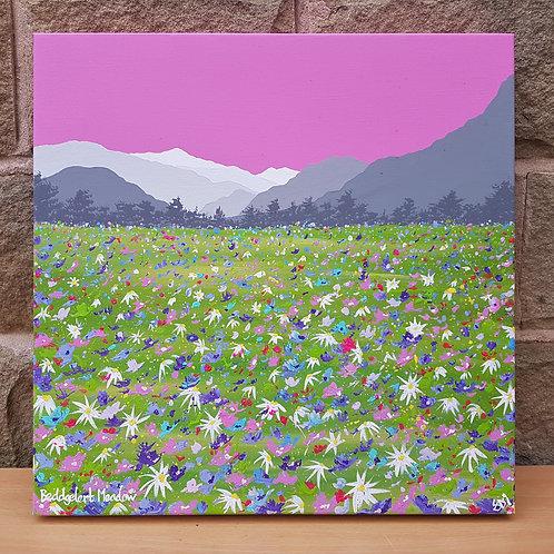 Beddgelert Meadow
