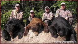 Group-Bear07.jpg