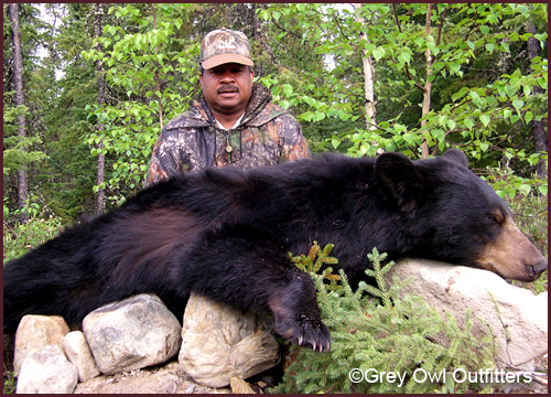 Black Bear Hunting in Manitoba - Gre