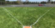 landsharks.field.png